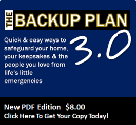 The Backup Plan  - Downloadable PDF Edition! - On Sale Now
